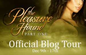 Chanyn Blog Tour