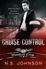cruisecontrolNSJ